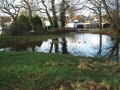 privett-rd-pond-2-130113